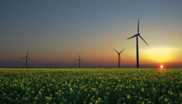 https://casaeficiente.com/wp-content/uploads/2018/04/energia-renovável-e1486380571914-770x439_c.jpg